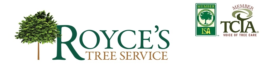 Royce's Tree Service