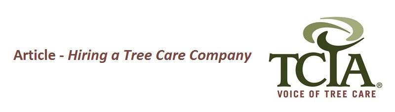 Hiring an arborist or tree care service