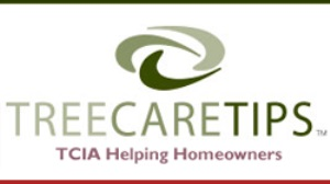 Tree Care Industry Association Tree Care Tips
